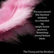 his-eyes-werentlike-blackout-windows
